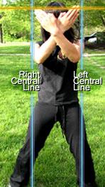 Center Line Central Lines