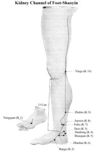 Kidney Channel of Foot-Shaoyin