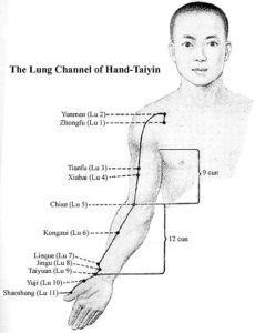 Lung Channel of Hand-Taiyin