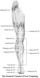 Stomach Channel of Foot-Yangming
