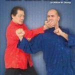 William Cheung - Wing Chun Kung Fu DVD 1