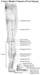 Urinary Bladder Channel of Foot-Taiyang
